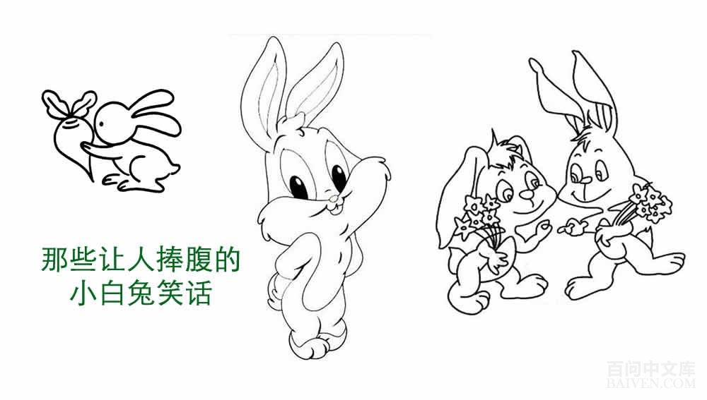 史上最全的小白兔经典笑话合集